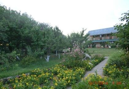 Отдых в Новоотрадном
